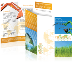 Brochure design for Biosphere International - click for larger view